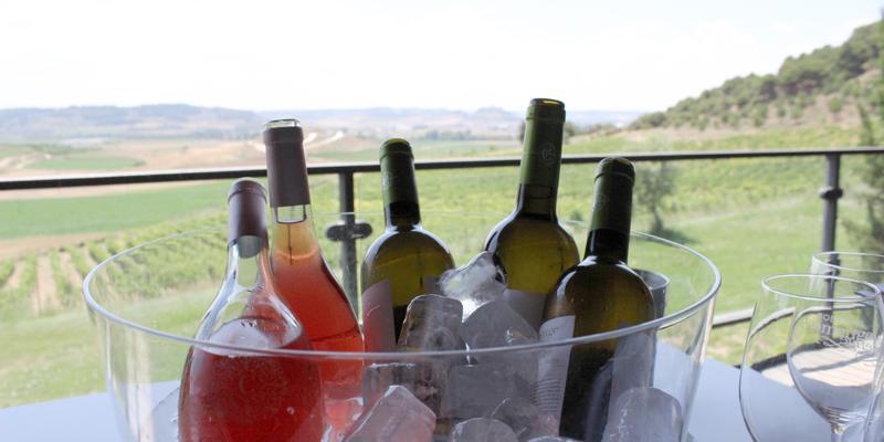 La fermentación del vino